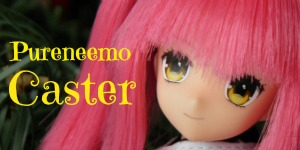 Pureneemo Caster Review